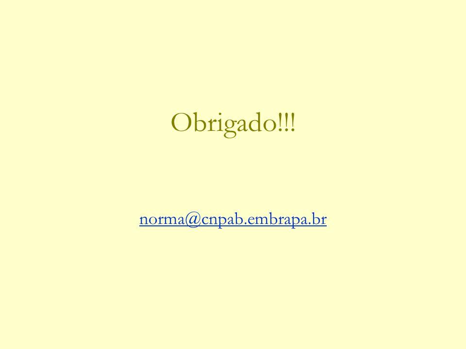 Obrigado!!! norma@cnpab.embrapa.br norma@cnpab.embrapa.br