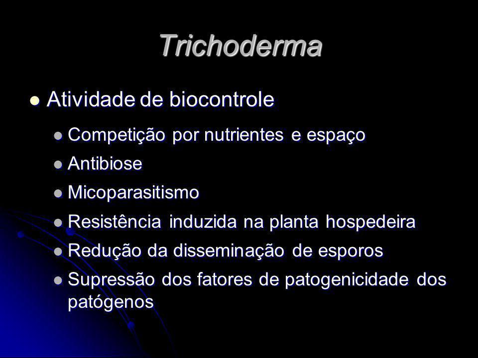 Trichoderma Atividade de biocontrole Atividade de biocontrole Competição por nutrientes e espaço Competição por nutrientes e espaço Antibiose Antibios