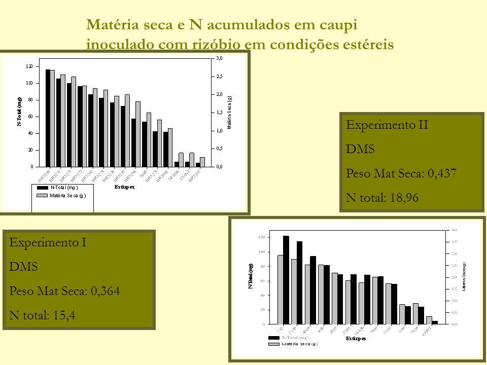 Experimento I DMS Peso Mat Seca: 0,364 N total: 15,4 Experimento II DMS Peso Mat Seca: 0,437 N total: 18,96 Matéria seca e N acumulados em caupi inocu