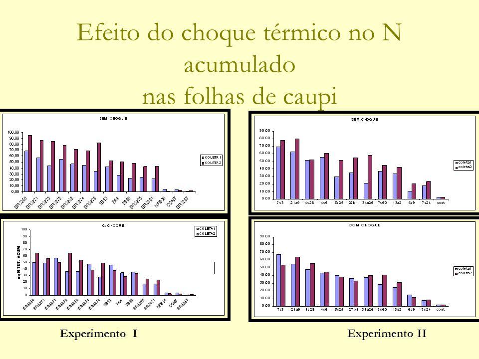 Efeito do choque térmico no N acumulado nas folhas de caupi Experimento IExperimento II