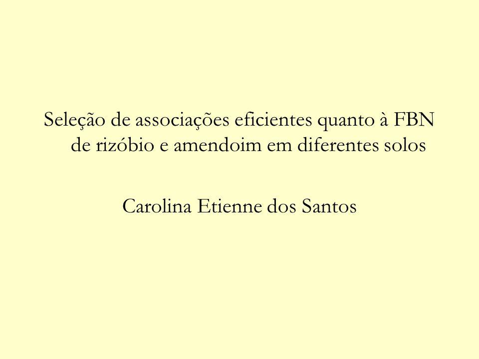 Seleção de associações eficientes quanto à FBN de rizóbio e amendoim em diferentes solos Carolina Etienne dos Santos