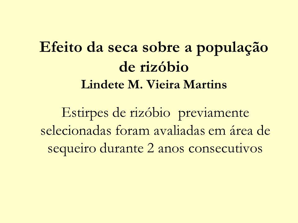 Efeito da seca sobre a população de rizóbio Lindete M. Vieira Martins Estirpes de rizóbio previamente selecionadas foram avaliadas em área de sequeiro