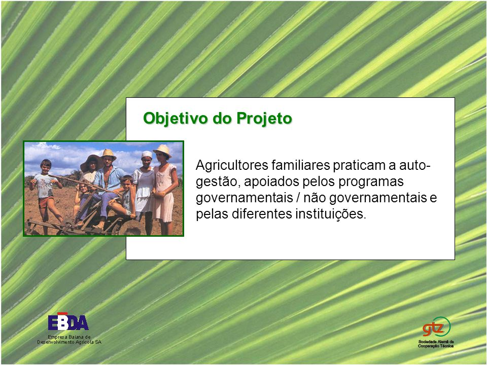 Agricultores familiares praticam a auto- gestão, apoiados pelos programas governamentais / não governamentais e pelas diferentes instituições. Objetiv