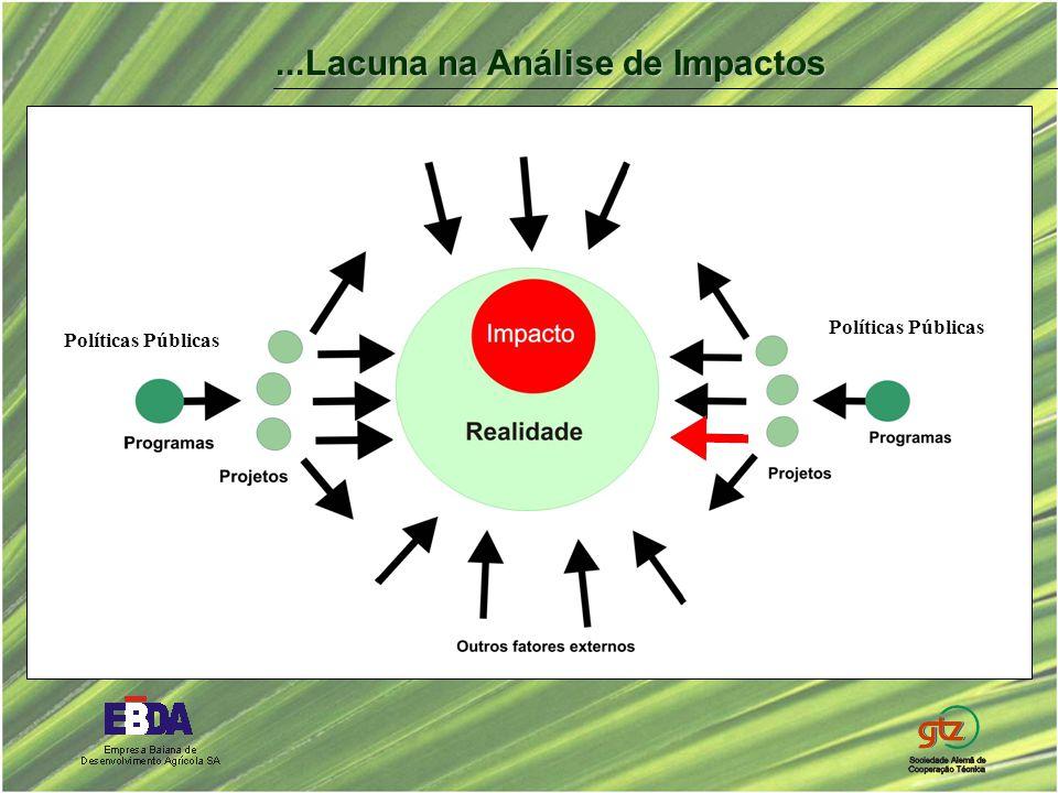Políticas Públicas...Lacuna na Análise de Impactos