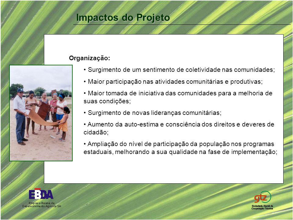 Organização: Surgimento de um sentimento de coletividade nas comunidades; Maior participação nas atividades comunitárias e produtivas; Maior tomada de