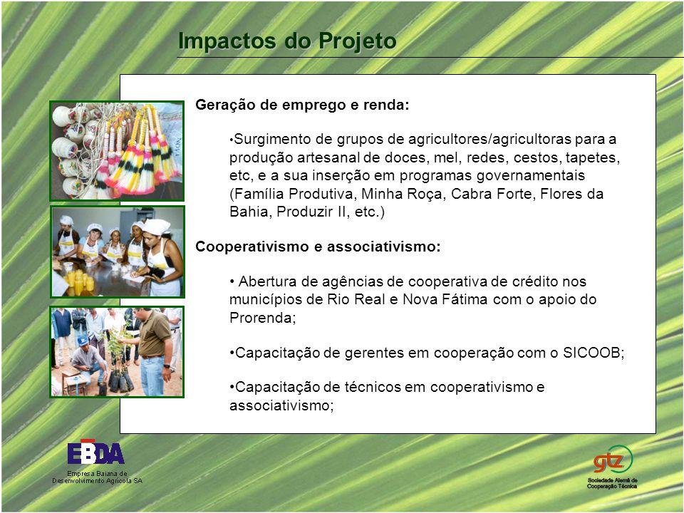 Geração de emprego e renda: Surgimento de grupos de agricultores/agricultoras para a produção artesanal de doces, mel, redes, cestos, tapetes, etc, e