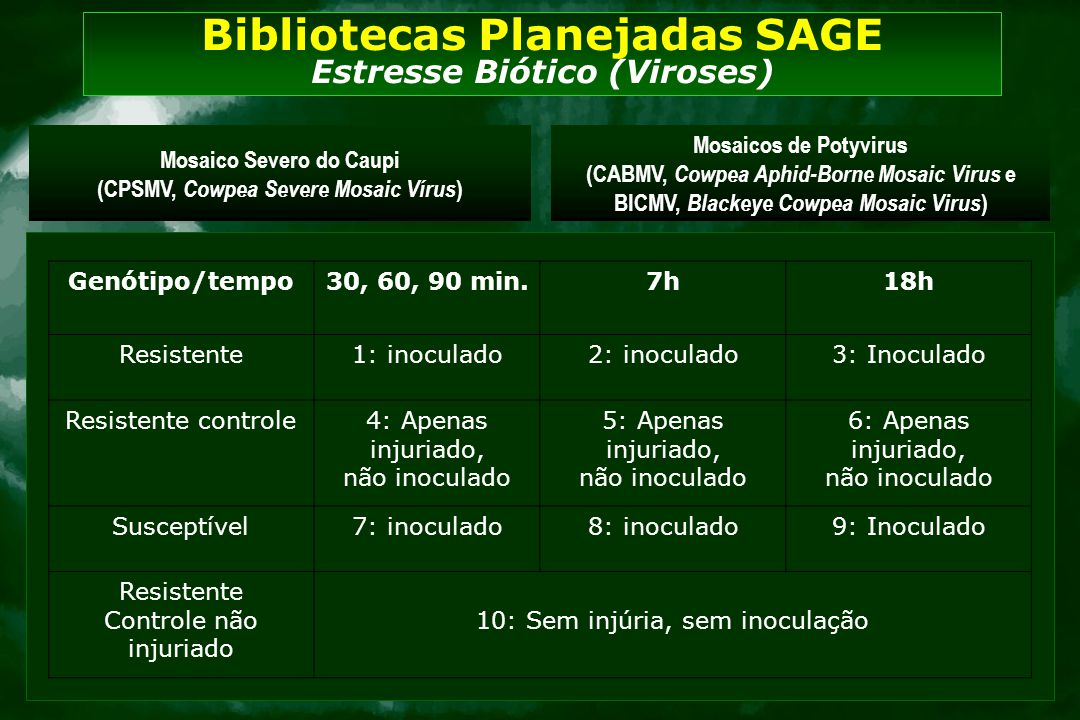 Genótipo/tempo30, 60, 90 min.7h18h Resistente1: inoculado2: inoculado3: Inoculado Resistente controle4: Apenas injuriado, não inoculado 5: Apenas inju