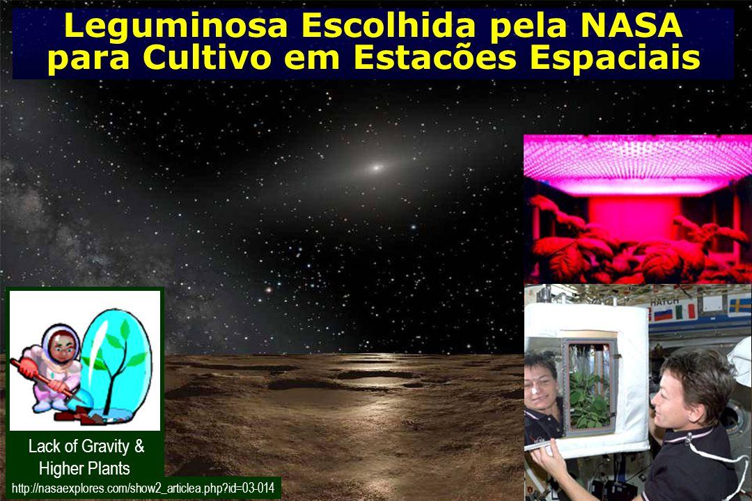 http://nasaexplores.com/show2_articlea.php?id=03-014 Leguminosa Escolhida pela NASA para Cultivo em Estacões Espaciais Lack of Gravity & Higher Plants