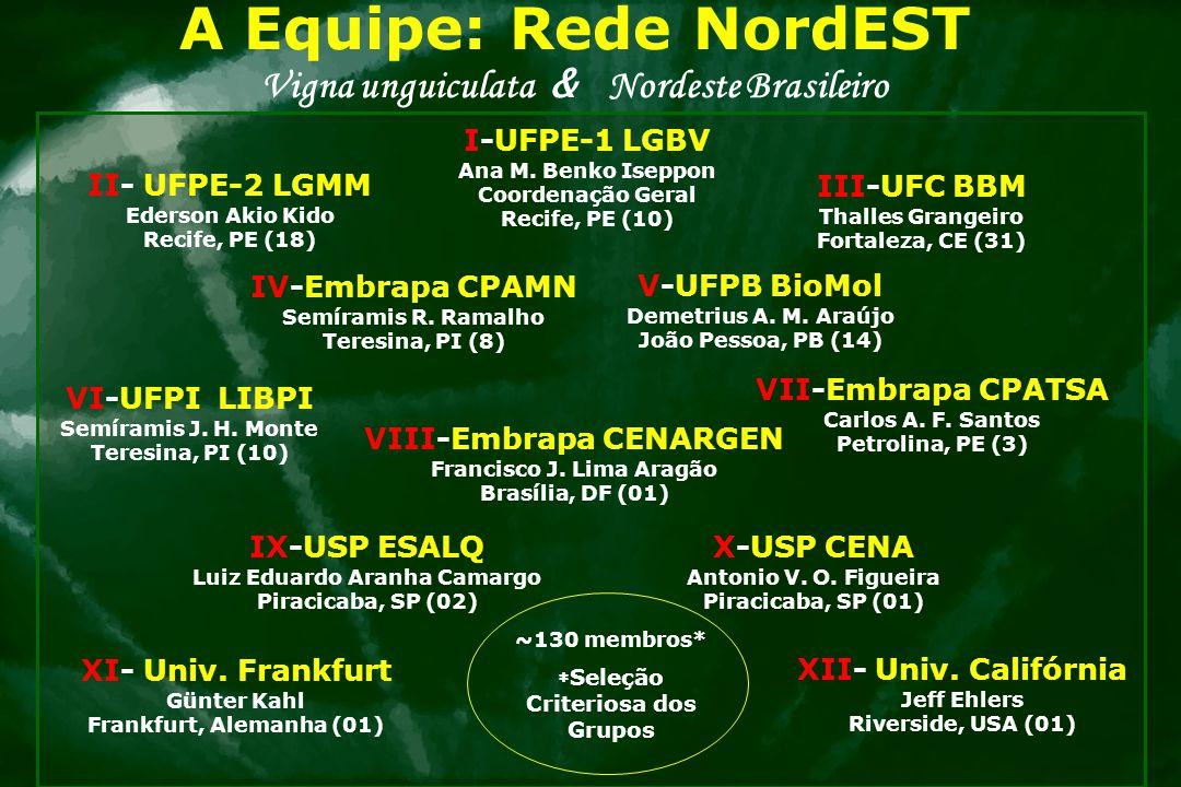 A Equipe: Rede NordEST Vigna unguiculata & Nordeste Brasileiro I-UFPE-1 LGBV Ana M. Benko Iseppon Coordenação Geral Recife, PE (10) II- UFPE-2 LGMM Ed