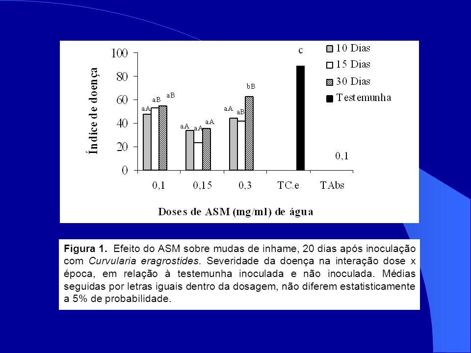 Figura 1.Efeito do ASM sobre mudas de inhame, 20 dias após inoculação com Curvularia eragrostides.