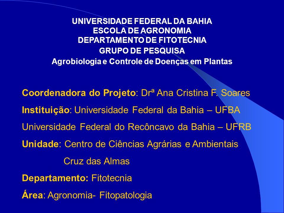 Coordenadora do Projeto: Drª Ana Cristina F.