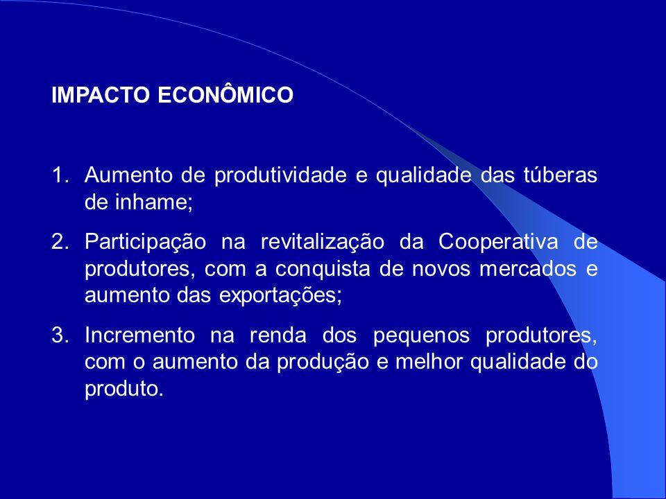 IMPACTO ECONÔMICO 1.Aumento de produtividade e qualidade das túberas de inhame; 2.Participação na revitalização da Cooperativa de produtores, com a conquista de novos mercados e aumento das exportações; 3.Incremento na renda dos pequenos produtores, com o aumento da produção e melhor qualidade do produto.