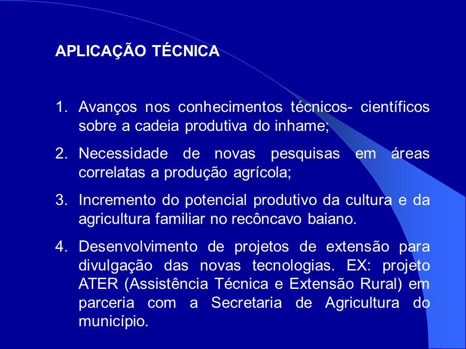 APLICAÇÃO TÉCNICA 1.Avanços nos conhecimentos técnicos- científicos sobre a cadeia produtiva do inhame; 2.Necessidade de novas pesquisas em áreas correlatas a produção agrícola; 3.Incremento do potencial produtivo da cultura e da agricultura familiar no recôncavo baiano.