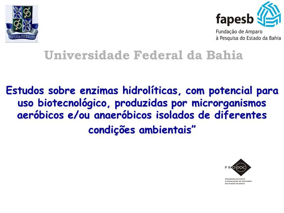 Estudos sobre enzimas hidrolíticas, com potencial para uso biotecnológico, produzidas por microrganismos aeróbicos e/ou anaeróbicos isolados de difere