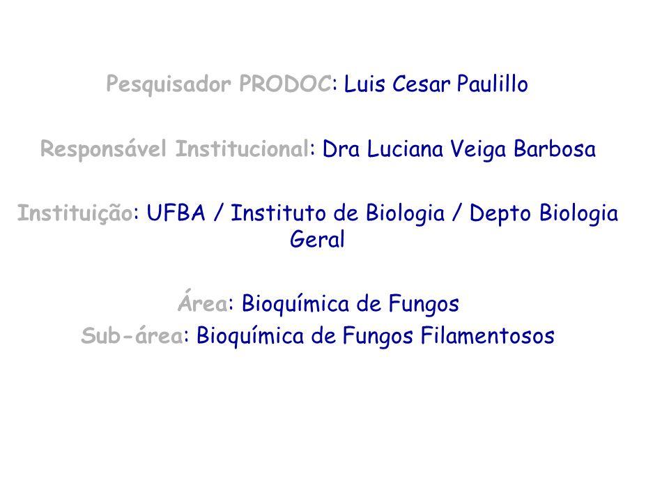 Pesquisador PRODOC: Luis Cesar Paulillo Responsável Institucional: Dra Luciana Veiga Barbosa Instituição: UFBA / Instituto de Biologia / Depto Biologi