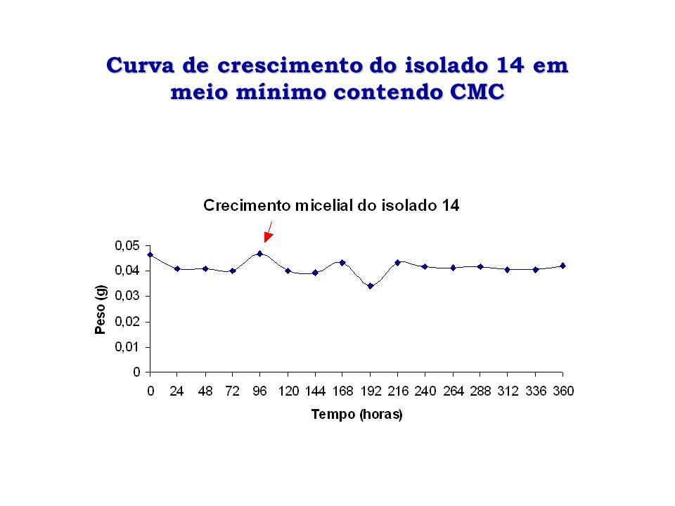 Curva de crescimento do isolado 14em meio mínimo contendo CMC Curva de crescimento do isolado 14 em meio mínimo contendo CMC
