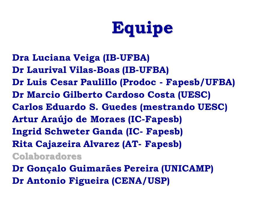 Equipe Dra Luciana Veiga (IB-UFBA) Dr Laurival Vilas-Boas (IB-UFBA) Dr Luis Cesar Paulillo (Prodoc - Fapesb/UFBA) Dr Marcio Gilberto Cardoso Costa (UE