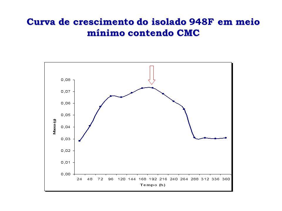 Curva de atividade enzimática do isolado em meio mínimo contendo CMC Curva de atividade enzimática do isolado 948F em meio mínimo contendo CMC