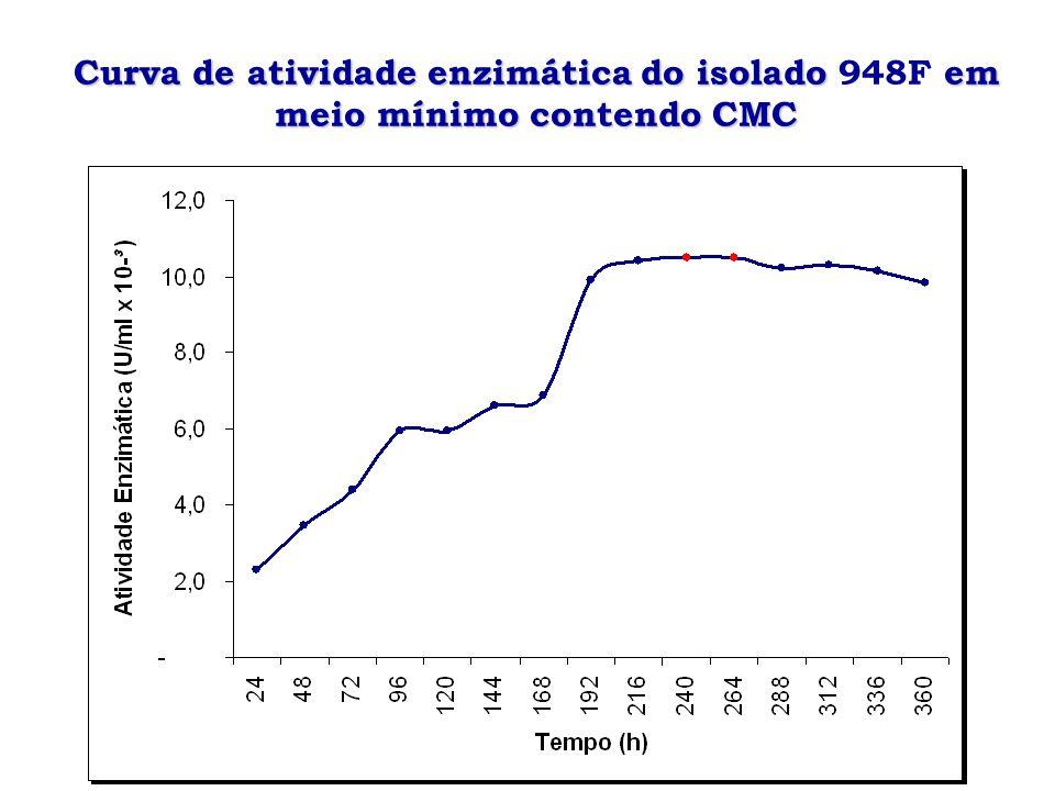 Curva de crescimento do isolado em meio TLE acrescido de CMC Curva de crescimento do isolado ALF 323 em meio TLE acrescido de CMC