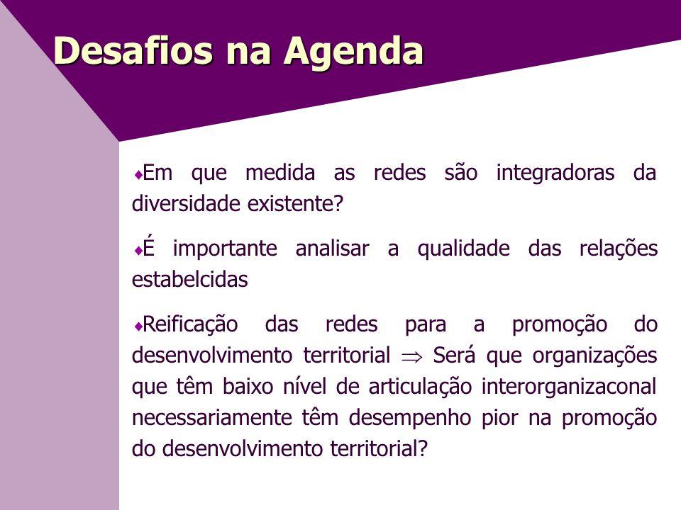 Desafios na Agenda  Em que medida as redes são integradoras da diversidade existente.