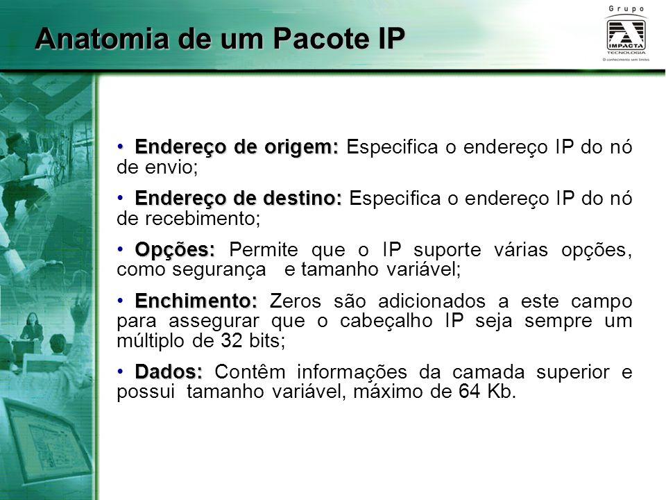 Anatomia de um Pacote IP Endereço de origem: Endereço de origem: Especifica o endereço IP do nó de envio; Endereço de destino: Endereço de destino: Es
