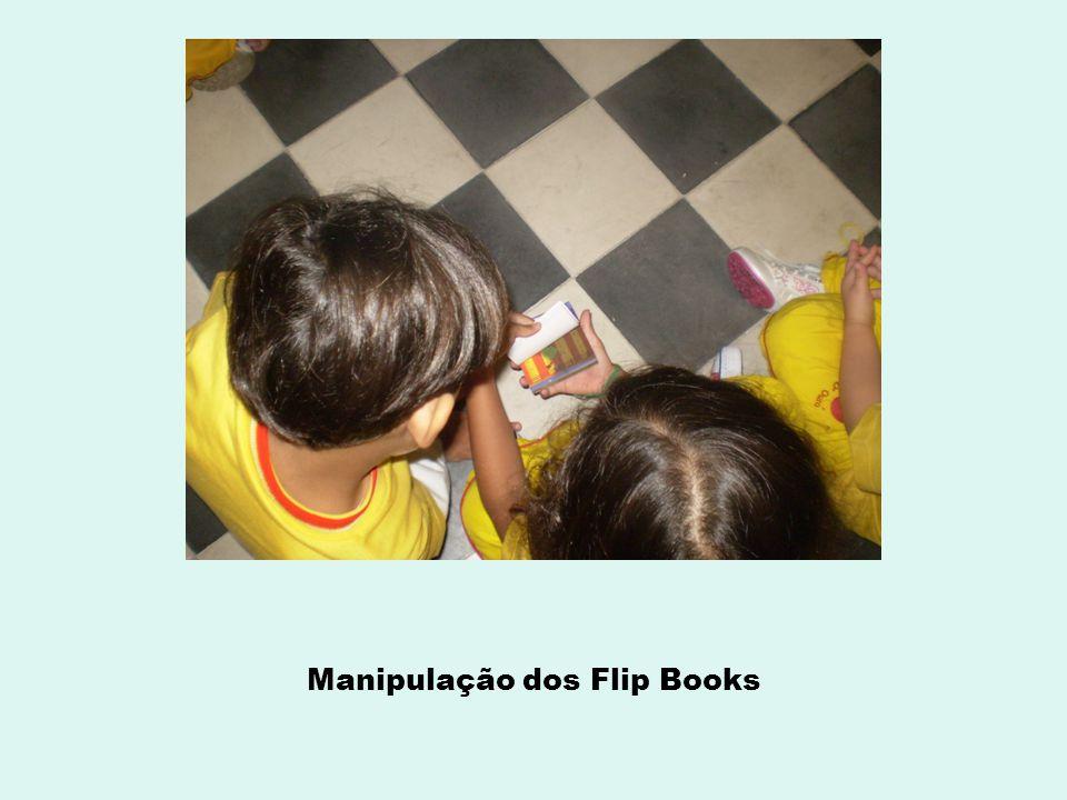 Manipulação dos Flip Books