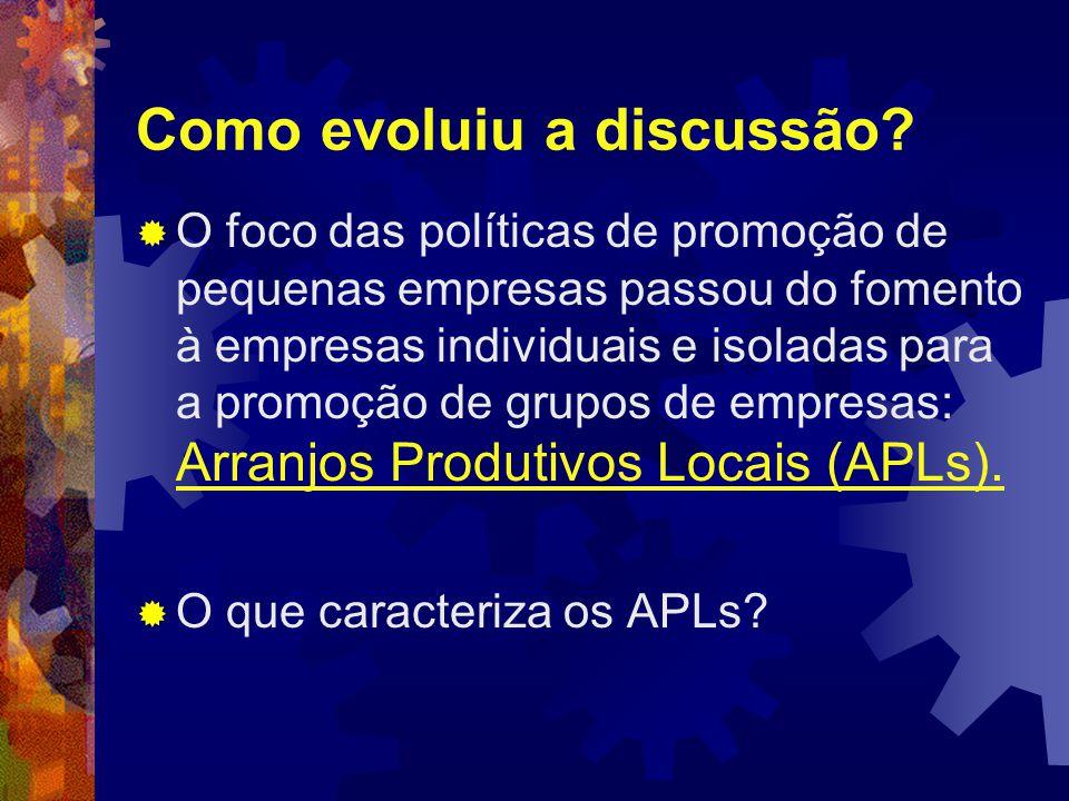 A especificidade dos arranjos produtivos faz com que uma política de promoção de APLs envolva, necessariamente, instituições e atores locais, de modo a criar condições para a cooperação e a geração de emprego e renda.
