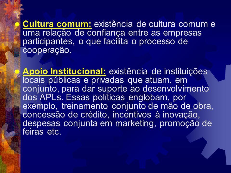  Cultura comum: existência de cultura comum e uma relação de confiança entre as empresas participantes, o que facilita o processo de cooperação.
