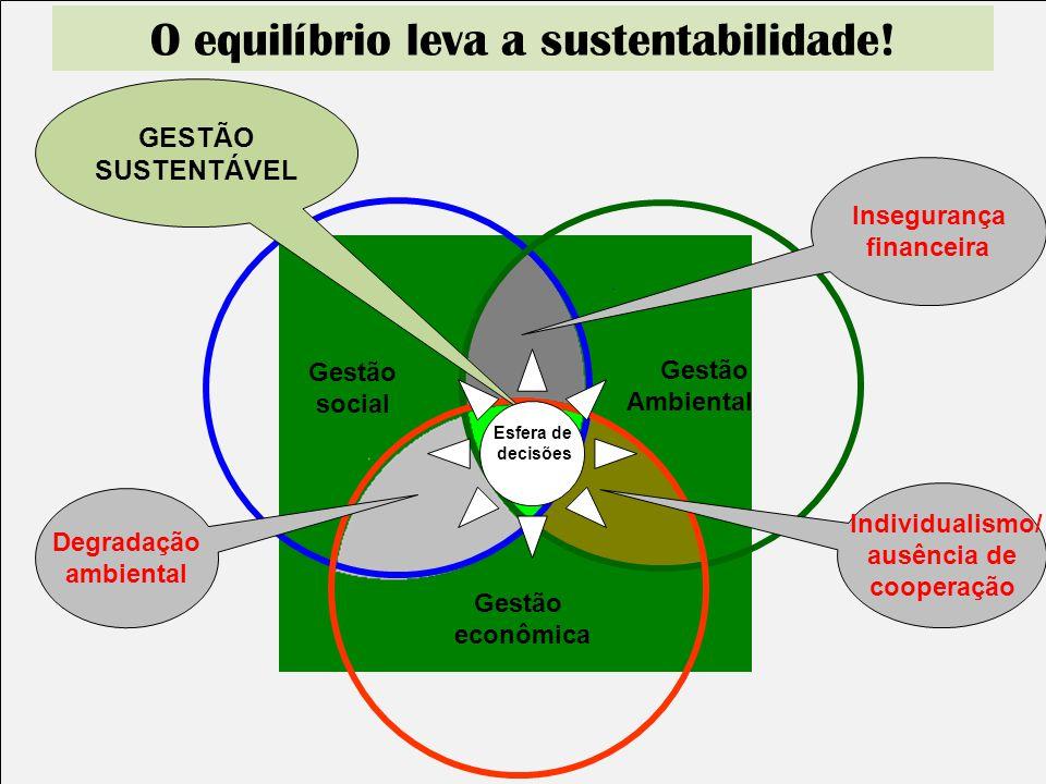 Gestão social Gestão Ambiental Gestão econômica Insegurança financeira Individualismo/ ausência de cooperação Degradação ambiental GESTÃO SUSTENTÁVEL
