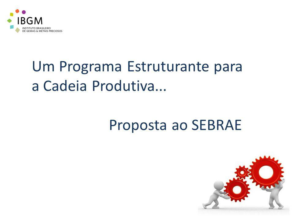 Um Programa Estruturante para a Cadeia Produtiva... Proposta ao SEBRAE