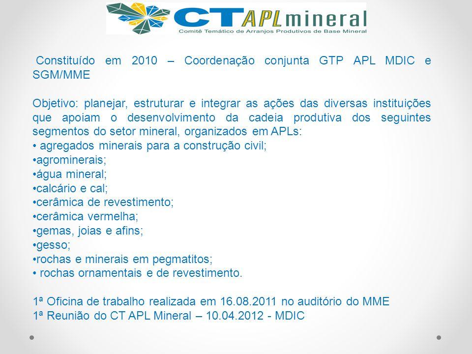 Constituído em 2010 – Coordenação conjunta GTP APL MDIC e SGM/MME Objetivo: planejar, estruturar e integrar as ações das diversas instituições que apo