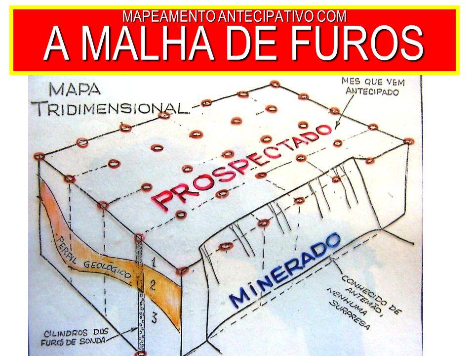 MAPEAMENTO ANTECIPATIVO COM A MALHA DE FUROS