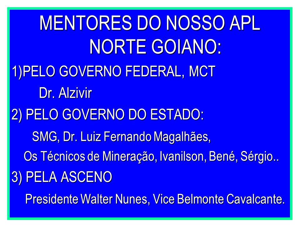 MENTORES DO NOSSO APL NORTE GOIANO: 1)PELO GOVERNO FEDERAL, MCT Dr. Alzivir Dr. Alzivir 2) PELO GOVERNO DO ESTADO: SMG, Dr. Luiz Fernando Magalhães, S