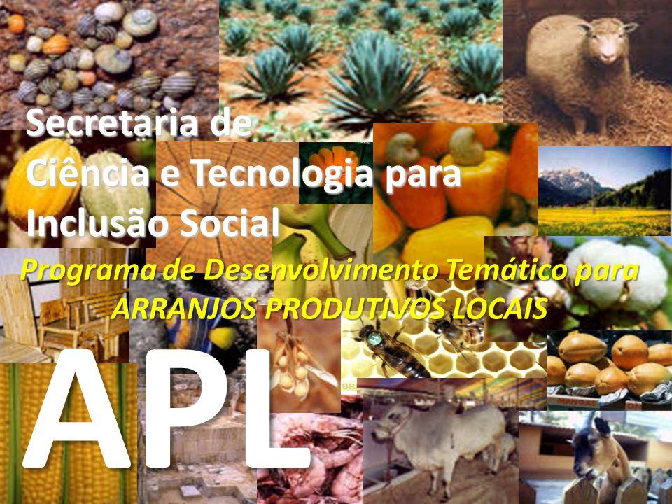 Secretaria de Ciência e Tecnologia para Inclusão Social Programa de Desenvolvimento Temático para ARRANJOS PRODUTIVOS LOCAIS APL