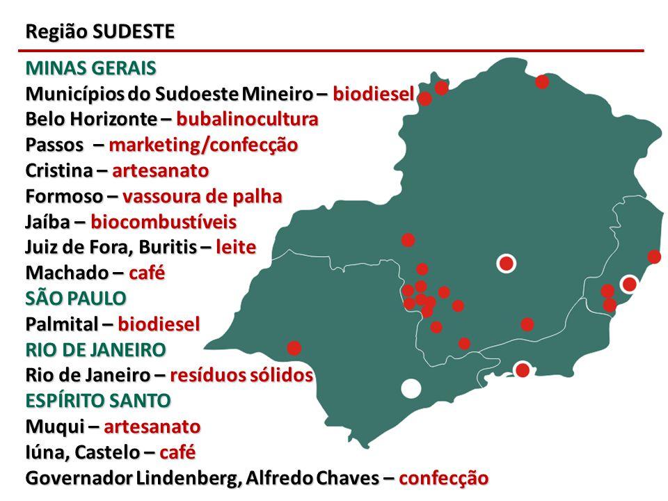 Região SUDESTE MINAS GERAIS Municípios do Sudoeste Mineiro – biodiesel Belo Horizonte – bubalinocultura Passos – marketing/confecção Cristina – artesa