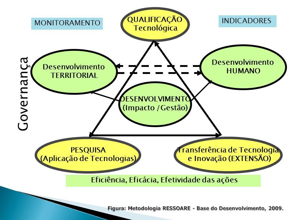 QUALIFICAÇÃO Tecnológica Transferência de Tecnologia e Inovação (EXTENSÃO) DESENVOLVIMENTO (Impacto /Gestão) PESQUISA (Aplicação de Tecnologias) Desenvolvimento HUMANO Desenvolvimento TERRITORIAL Eficiência, Eficácia, Efetividade das ações MONITORAMENTO INDICADORES Governança