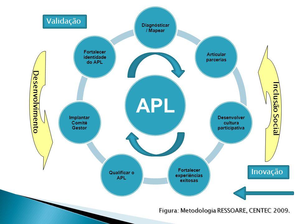 APL Diagnósticar / Mapear Articular parcerias Desenvolver cultura participativa Fortalecer experiências exitosas Qualificar o APL Implantar Comitê Gestor Fortalecer identidade do APL Inovação Validação Figura: Metodologia RESSOARE, CENTEC 2009.