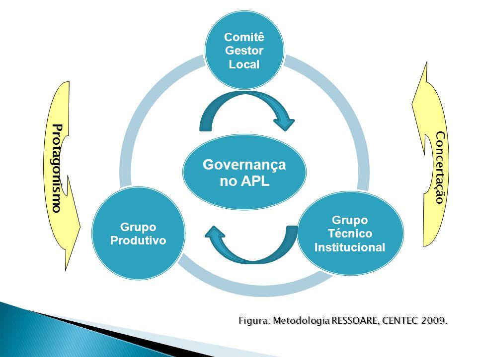 Governança no APL Comitê Gestor Local Grupo Técnico Institucional Grupo Produtivo Figura: Metodologia RESSOARE, CENTEC 2009.