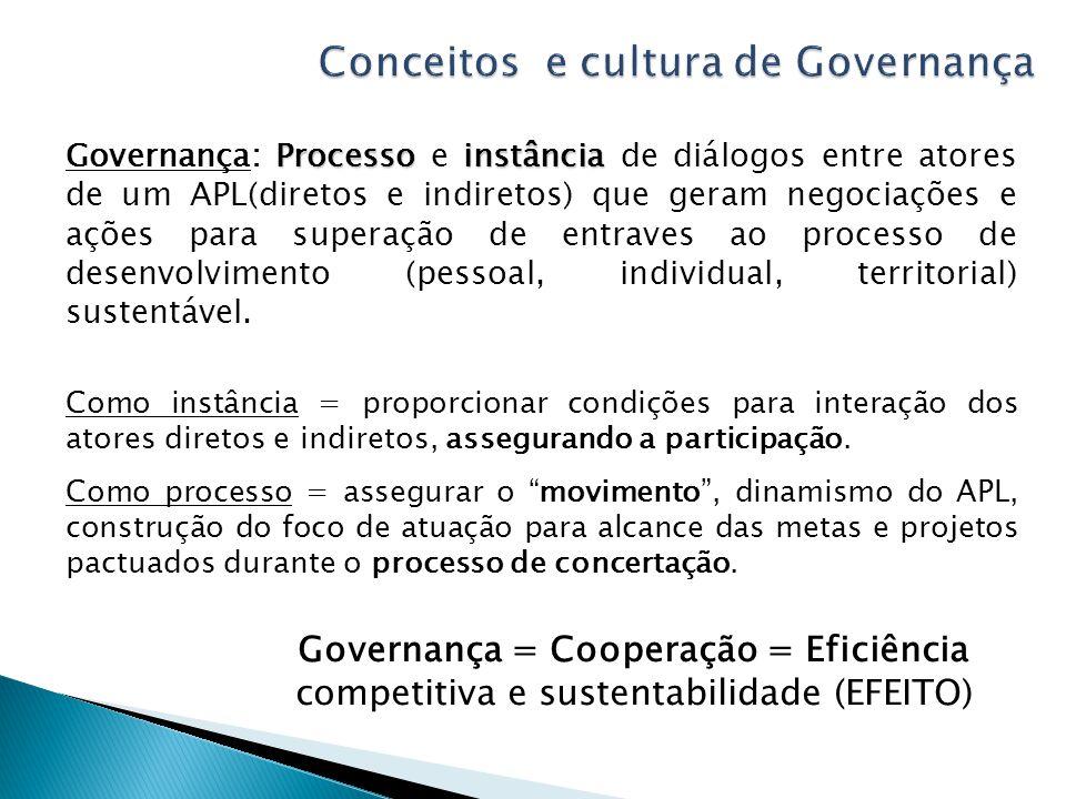Processoinstância Governança: Processo e instância de diálogos entre atores de um APL(diretos e indiretos) que geram negociações e ações para superação de entraves ao processo de desenvolvimento (pessoal, individual, territorial) sustentável.