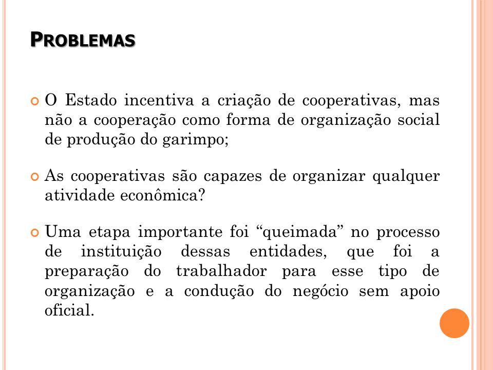 P ROBLEMAS O Estado incentiva a criação de cooperativas, mas não a cooperação como forma de organização social de produção do garimpo; As cooperativas são capazes de organizar qualquer atividade econômica.