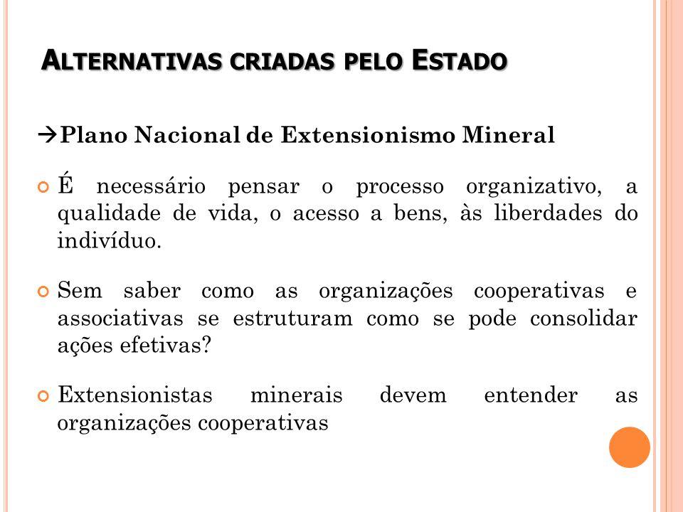 A LTERNATIVAS CRIADAS PELO E STADO  Plano Nacional de Extensionismo Mineral É necessário pensar o processo organizativo, a qualidade de vida, o acesso a bens, às liberdades do indivíduo.