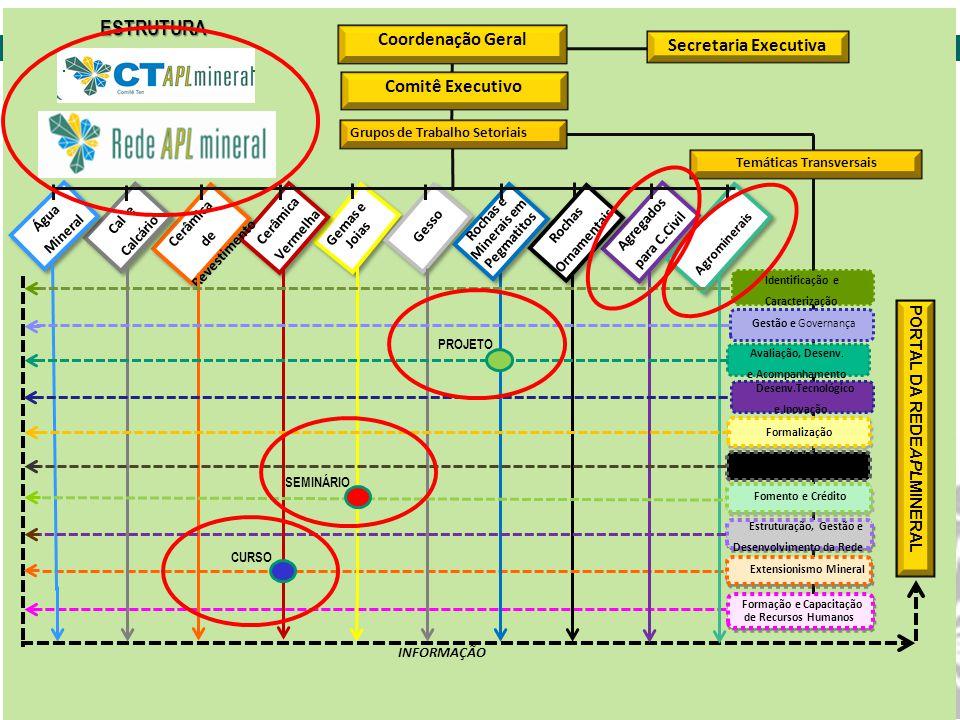 Rede Brasileira de Informação de Arranjos Produtivos Locais de Base Mineral Estrutura do CT APL de Base Mineral e RedeAPLmineral ESTRUTURA