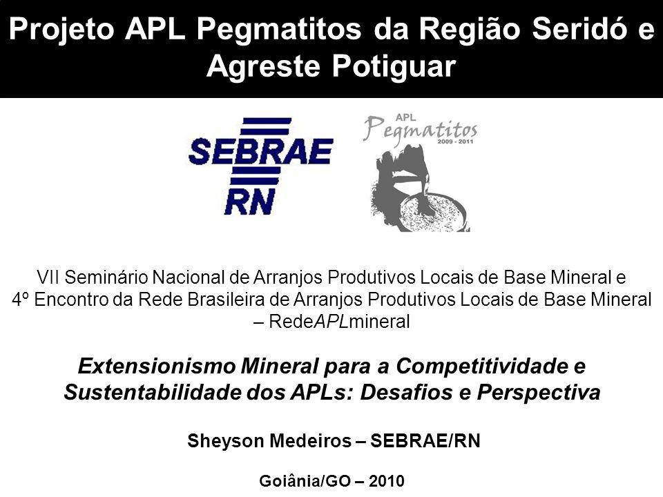 Projeto APL Pegmatitos da Região Seridó e Agreste Potiguar Goiânia/GO – 2010 VII Seminário Nacional de Arranjos Produtivos Locais de Base Mineral e 4º