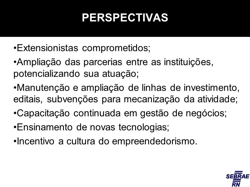 PERSPECTIVAS Extensionistas comprometidos; Ampliação das parcerias entre as instituições, potencializando sua atuação; Manutenção e ampliação de linha