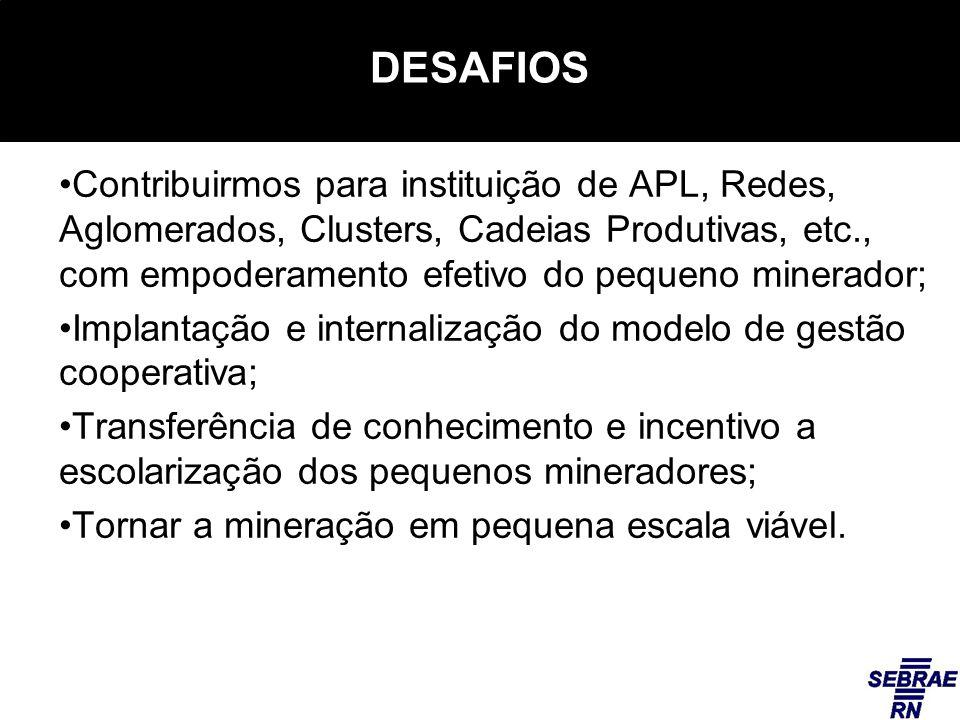 DESAFIOS Contribuirmos para instituição de APL, Redes, Aglomerados, Clusters, Cadeias Produtivas, etc., com empoderamento efetivo do pequeno minerador