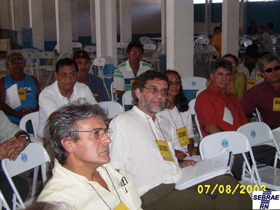 CONTEXTUALIZAÇÃO 2004 – Ampliação das parcerias; Assinatura Convênio – Projeto Desenvolvimento em Rede do APL Pegmatitos do RN/PB, em Parelhas; Seminário – Uma política para o setor mineral do RN, em Currais Novos;