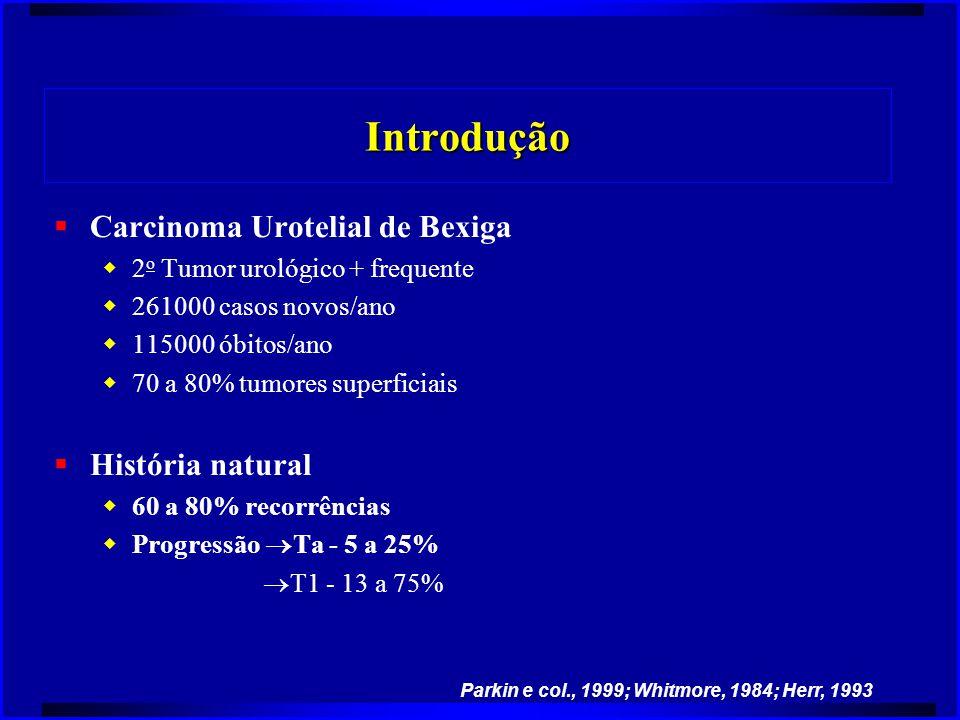 Introdução  Carcinoma Urotelial de Bexiga  2 o Tumor urológico + frequente  261000 casos novos/ano  115000 óbitos/ano  70 a 80% tumores superfici