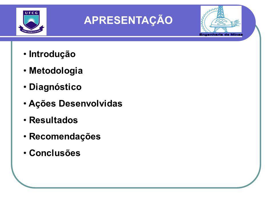 Introdução Metodologia Diagnóstico Ações Desenvolvidas Resultados Recomendações Conclusões APRESENTAÇÃO