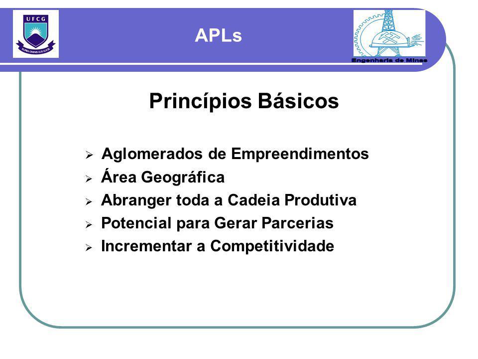 Princípios Básicos  Aglomerados de Empreendimentos  Área Geográfica  Abranger toda a Cadeia Produtiva  Potencial para Gerar Parcerias  Incrementar a Competitividade APLs