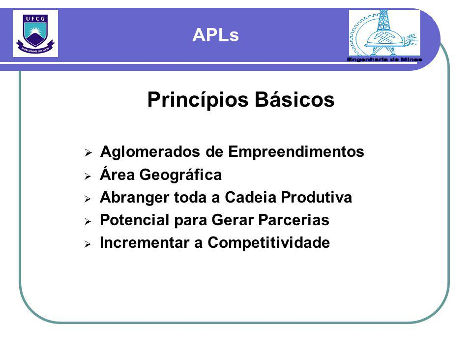 Princípios Básicos  Aglomerados de Empreendimentos  Área Geográfica  Abranger toda a Cadeia Produtiva  Potencial para Gerar Parcerias  Incrementa
